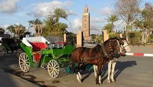 hind5DaysMoroccoTour26