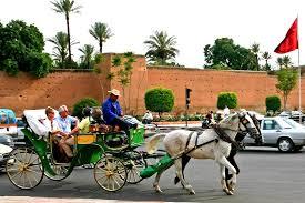 hind5DaysMoroccoTour28